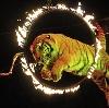 Цирки в Сарапуле